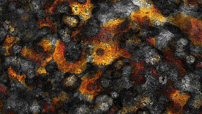 Fired Clay Painting - Lichen by Frank Tschakert