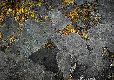 Photograph - Lichen On Granite Rock Abstract by Donna Lee