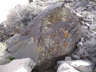 Photograph - Lichen Painted Boulder by Joel Deutsch