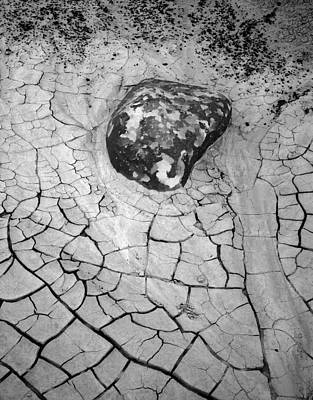 Photograph - Lichen Rock  Bisti Badlands New Mexico by Nathan Mccreery