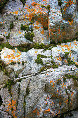 Photograph - Lichen Rock by Jim Arnold