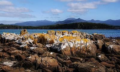 Photograph - Lichen Rocks On Recherche Bay, Tasmania by Lexa Harpell