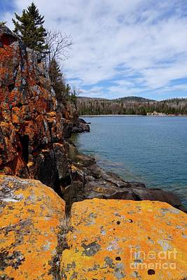 Photograph - Lichen Rocks by Sandra Updyke
