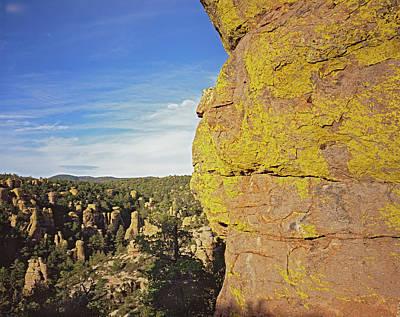 Photograph - Lichen Wall by Tom Daniel