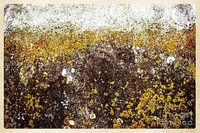 Popstar And Musician Paintings Royalty Free Images - Lichens Royalty-Free Image by Gary Richards