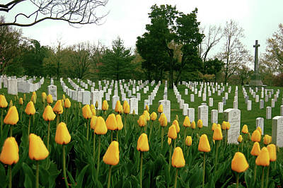 Grave Yard Photograph - Life And Death At Arlington by Jame Hayes