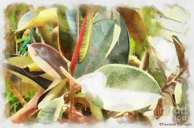 Photograph - Life Anew by Paulette B Wright