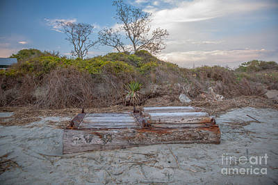 Photograph - High Tide Treasure by Dale Powell