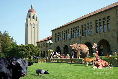 Photograph - Life Down On The Farm Under The Moon Stanford University California Dsc685 by San Francisco Art and Photography