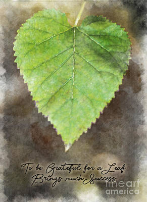 Photograph - Life Empowering Metaphors- To Be Grateful For A Leaf Brings Much Success by James Hennis
