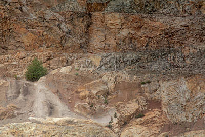 Photograph - Life In A Rock Quarry by Jacqui Boonstra