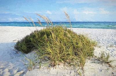 Photograph - Life In South Walton by JC Findley