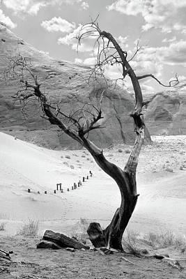 Life In The Desert -  Arizona Print by Mike McGlothlen