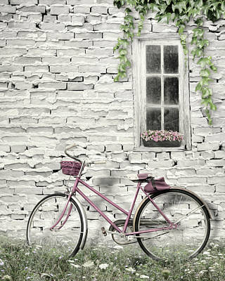 Black Is Beautiful Wall Art - Photograph - Life Is A Beautiful Ride by Lori Deiter
