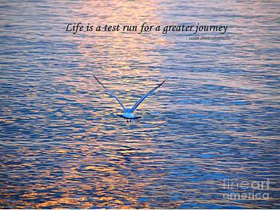 Art Print featuring the photograph Life Is A Test Run For A Greater Journey by Susan  Dimitrakopoulos