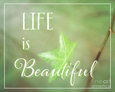 Photograph - Life Is Beautiful by Hal Halli