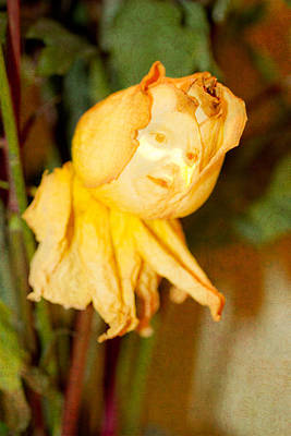 Photograph - Life Of A Wilted Rose by Marie Jamieson