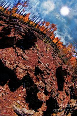 Photograph - Life On Lava by Blake Richards