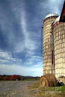 Photograph - Life On The Farm by Nicki McManus