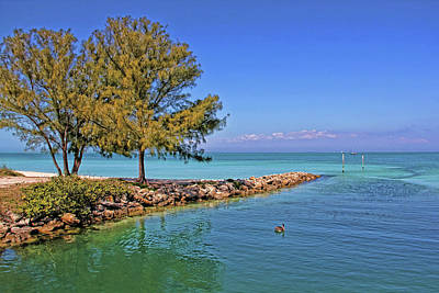 Photograph - Life On The Island by HH Photography of Florida