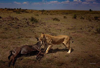 Photograph - Life On The Masai-mara by Tim Bryan