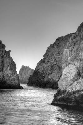 Photograph - Life On The Rocks by Bill Hamilton
