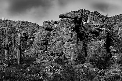Mark Myhaver Royalty Free Images - Life On The Rocks BW Royalty-Free Image by Mark Myhaver