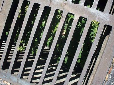 Life Underground Original by Warren Thompson