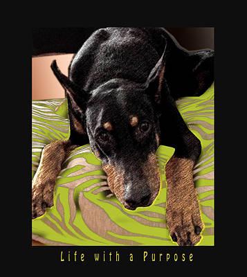 Doberman Pinscher Pop Art Photograph - Life With A Purpose by Maria C Martinez