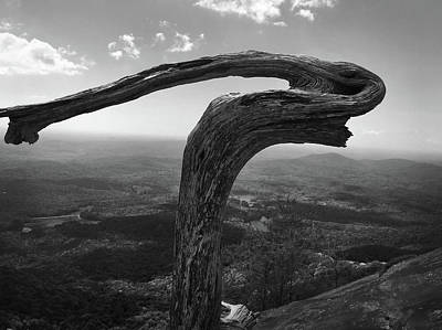 Photograph - Lifeless Tree Atop Table Rock by Kelly Hazel