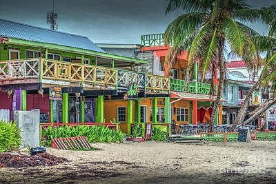 Photograph - Life's A Beach by David Zanzinger