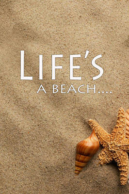 Installation Art Photograph - Life's A Beach by Tina M Wenger