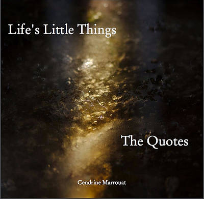 Photograph - Life's Little Things The Quotes by Cendrine Marrouat