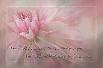 Lifes Purpose Art Print