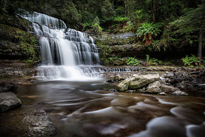 Photograph - Liffey Falls by Brad Grove