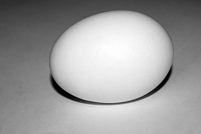Photograph - Light And Egg 14 by Isam Awad
