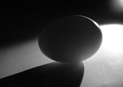 Photograph - Light And Egg 2 by Isam Awad
