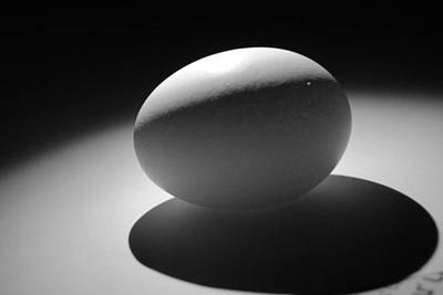 Photograph - Light And Egg 3 by Isam Awad