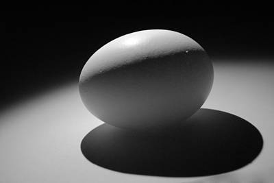 Photograph - Light And Egg 6 by Isam Awad