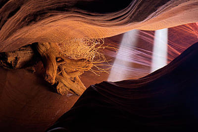 Photograph - Light Beams In The Canyon by Lucinda Walter