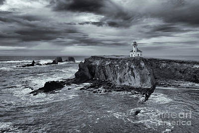 Photograph - Light Before The Storm by Mike Dawson