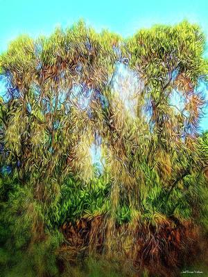 Digital Art - Light Beyond The Woods by Joel Bruce Wallach