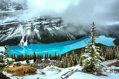 Photograph - Light Blue Reflections In Peyto Lake by Adam Jewell