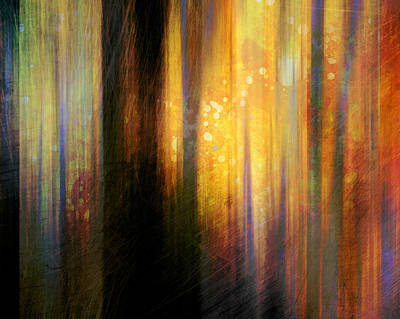 Digital Art - Light In The Forest by Ann Powell