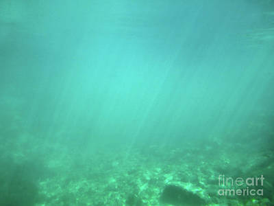Photograph - Light In The Water by Francesca Mackenney