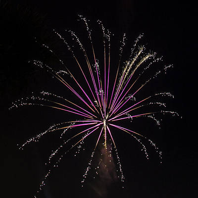Photograph - Pink Fireworks by Paula Porterfield-Izzo
