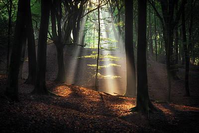 Pyrography - Light It Up by Edwin Mooijaart