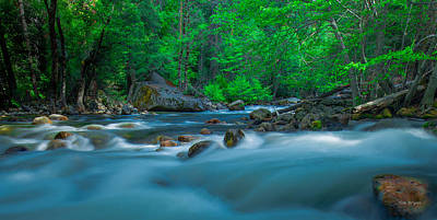 Photograph - Light Moves- The Merced River by Tim Bryan