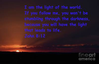 Photograph - Light Of Life by Mark McReynolds