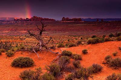 Light Of The Desert Art Print by John De Bord